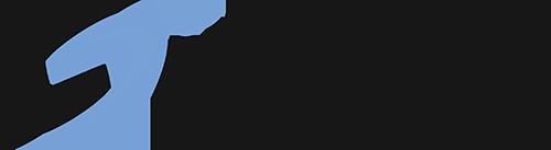 Infonet – Business Solutions